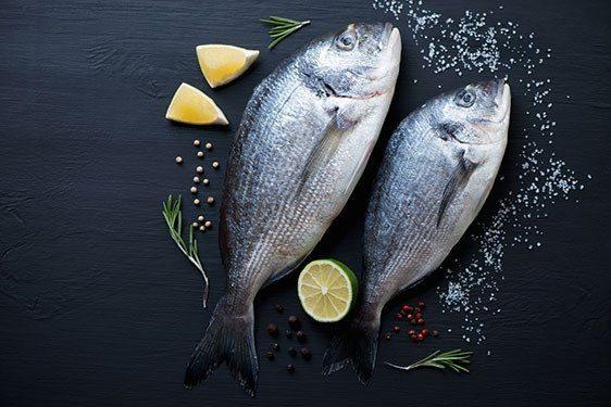 Ryby stanowią bardzo zdrowe źródło tłuszczów